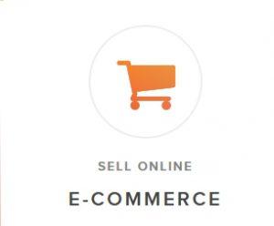 sell-online-e-commerce-system